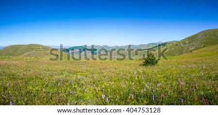 Idyllic landscape in the Apennine Mountains with fresh green meadows, blooming flowers and a beautiful panoramic view from Campo Imperatore plateau at Gran Sasso d'Italia national park, Abruzzo, Italy - stock photo