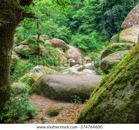 Idyllic natural scenery with big rounded overgrown boulders at a area named Huelgoat in Brittany, France - stock photo