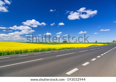Idyllic summer road with blooming field in Poland