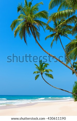 Idyllic tropical beach with clean white ocean sand and palm trees over the water - stock photo