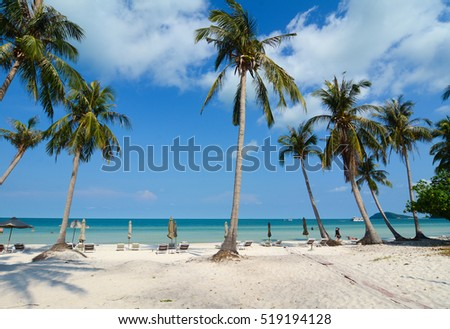 Idyllic tropical beach with many plam trees in sunny day