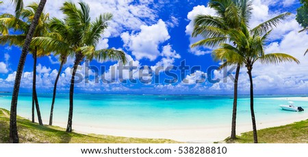 Idyllic tropical scene with palmt-rees and turquoise sea. Mauritius island