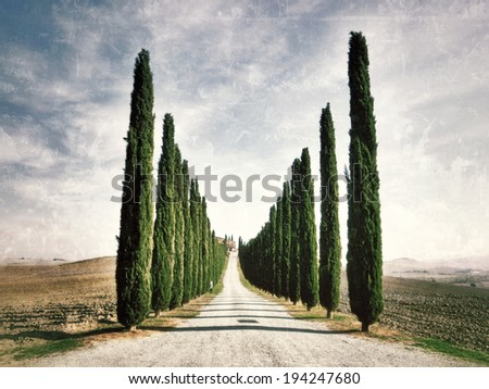 Idyllic Tuscan landscape with dirt road and cypress near Pienza, Vall d'Orcia Italy, Europe. Filtered image - stock photo