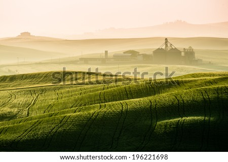 Idyllic view of hilly farmland in Tuscany in beautiful morning light - stock photo
