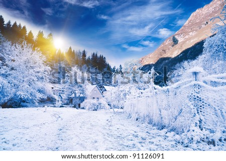 Idyllic winter landscape under blue sky. Alpine valley of Slovenia. - stock photo