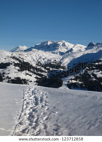 Idyllic Winter Scenery Near Gstaad