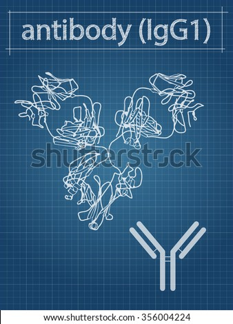 Antibody Stock Images Royalty Free Images Amp Vectors