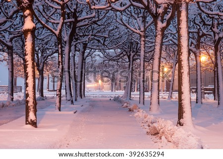 Illuminated alley in winter in Dresden - stock photo