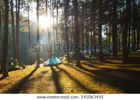 Illuminated blue Camping tent from sunlight with silhouette trees in outdoor - stock photo