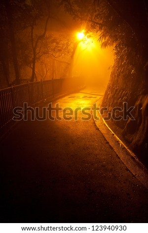Illuminated Path Through Dark Woods - stock photo