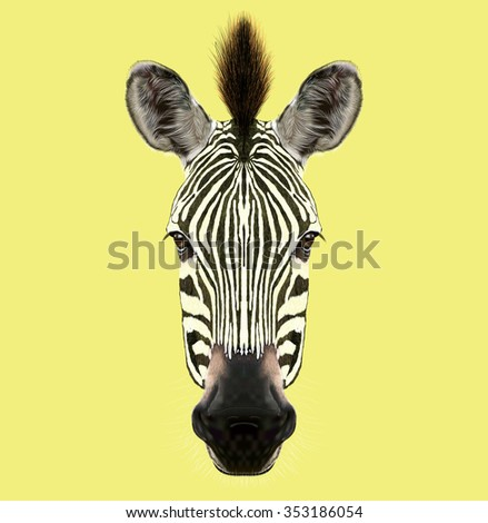 Zebra face stock images royalty free images vectors shutterstock illustrated portrait of zebra head of wild horse of africa on yellow background pronofoot35fo Gallery