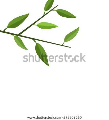 Illustration Bamboo Branch Tree with Green Leaf isolated on white - raster - stock photo