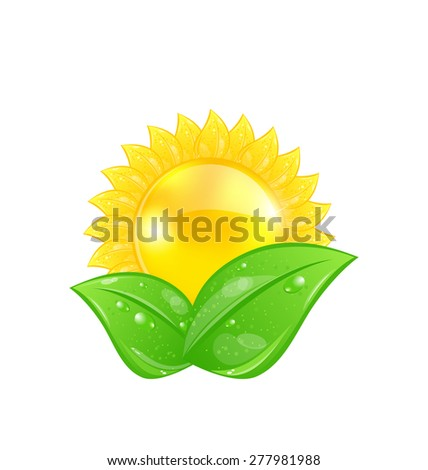Illustration eco friendly icon with sun and green leaves, isolated on white background - raster - stock photo