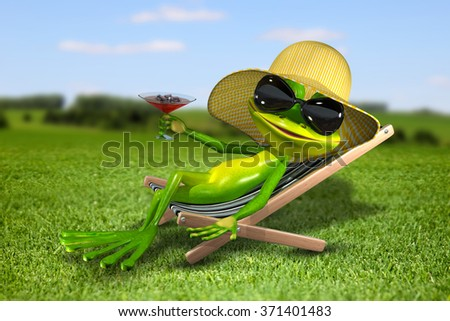 Illustration frog in a deck chair on the grass