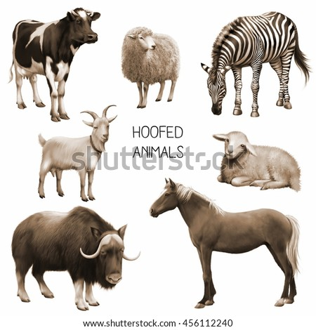 Illustration in sepia tones of female cow, sheep and white goat, horse. isolated on white background - stock photo