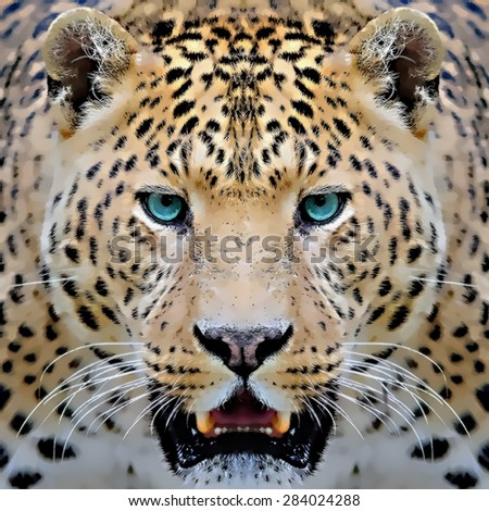 illustration leopard/abstract watercolor like leopard/leopard graphics /wild leopard hunting/leopard print  - stock photo