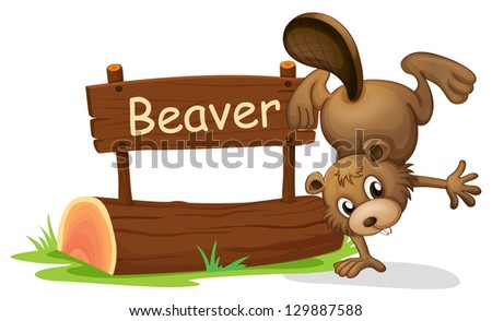 Illustration of a beaver perfoming a handstand beside a signboard on a white background