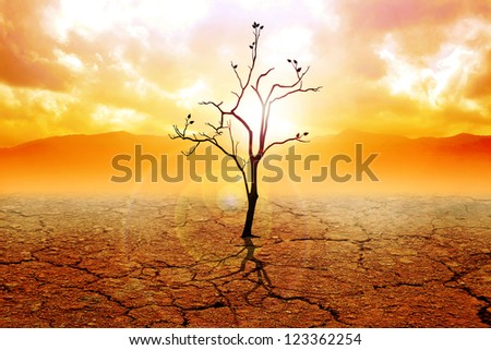 Illustration of a dried tree on dry land - stock photo