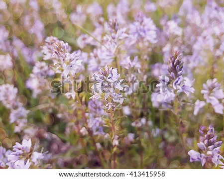Illustration of a field with purple flowers in the wild - stock photo