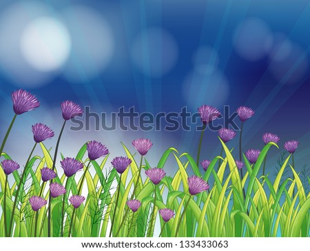 Illustration of a garden with fresh violet flowers