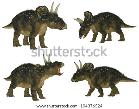 Illustration of a pack of four (4) Nedoceratops (dinosaur species formerly known as Diceratops) with different poses isolated on a white background - stock photo