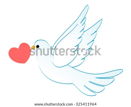 Illustration of a white dove carrying a red heart isolated on white background - stock photo