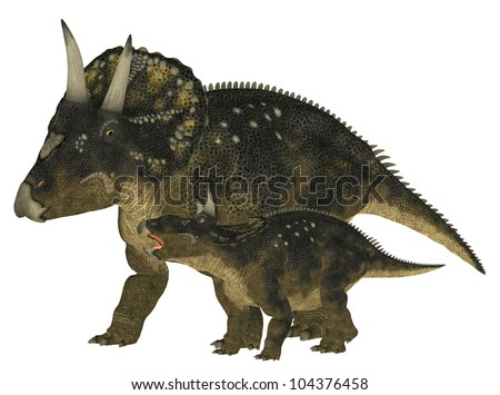 Illustration of an adult and a young Nedoceratops (dinosaur species formerly known as Diceratops) isolated on a white background - stock photo