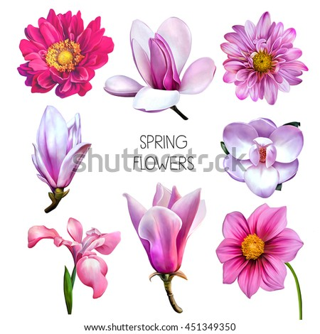 beautiful pink flowers illustration beautiful pastel red flowers isolated stock