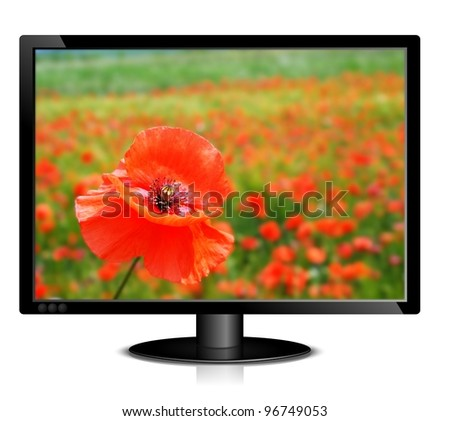 illustration of black lcd monitor with image of red poppy