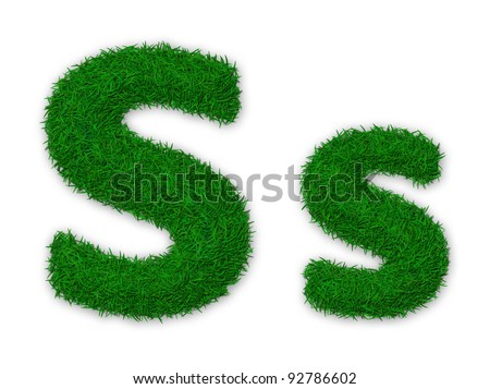 Illustration of capital and lowercase letter S made of grass