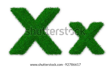 Illustration of capital and lowercase X letter made of grass - stock photo