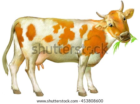 Illustration of cute cow on the white background. Illustration drawing on computer by graphic tablet.