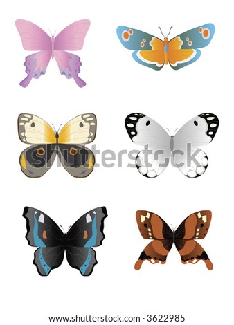 illustration of different color tropical butterflies isolated