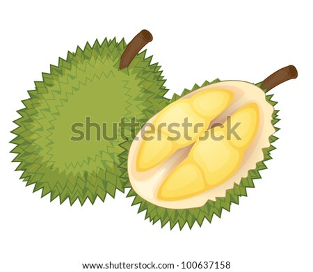 Illustration of friut on a white background - EPS VECTOR format also available in my portfolio.