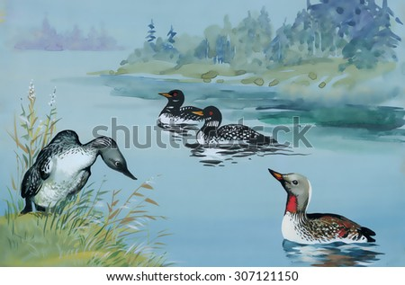 Illustration of Geese flock swimming on pond watercolor - stock photo