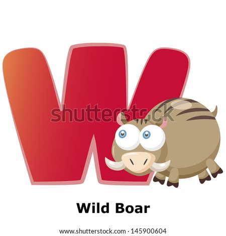 illustration of isolated animal alphabet W with wild boar on white
