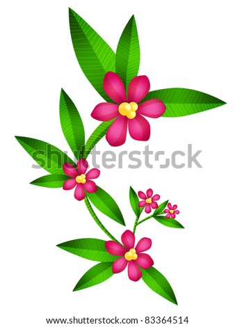 Illustration of Laurel branches flourished, isolated - stock photo