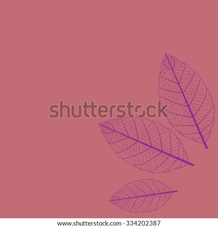 Illustration of Leaf Skeletonization nature background