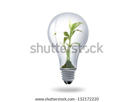 illustration of light bulb with plant inside