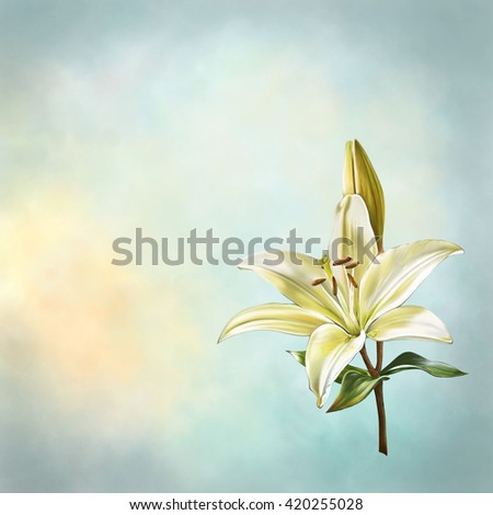 illustration of lily flower with sky background