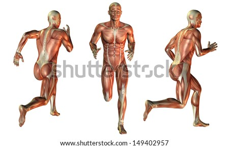 Illustration of muscle man while running