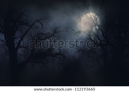 Illustration of night ravens on a trees background. - stock photo