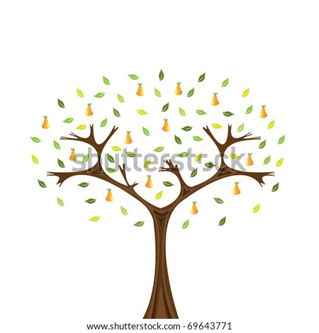 Illustration of pear tree isolated on white