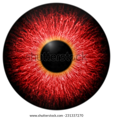 Illustration of red scary eye isolated on white - stock photo