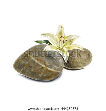 illustration of stone and flower on white background