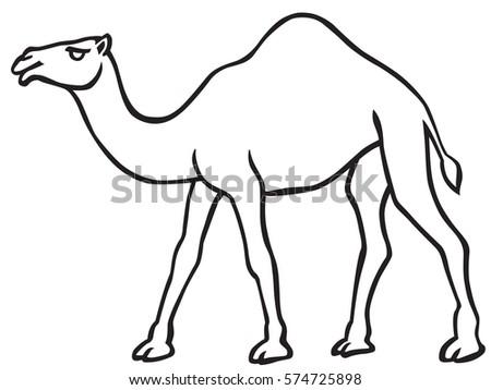 Cartoon Illustration Dromedary Camel Coloring Book Stock Vector