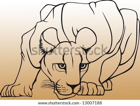Illustration of the lioness
