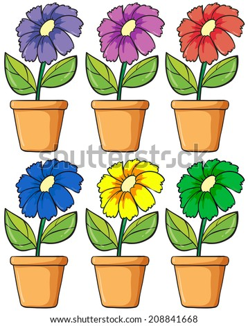 Illustration of the pots with flowering plants on a white background