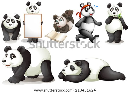 Illustration of the seven pandas on a white background - stock photo