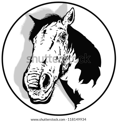 Illustration of the white horse - stock photo